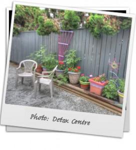 photo-detox2